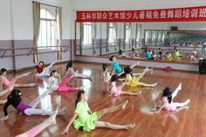 玉林市群众艺术馆举办2017年少儿暑期免费培训班